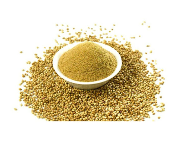 Coriander Powder 2